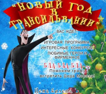 Новый год в Трансильвании